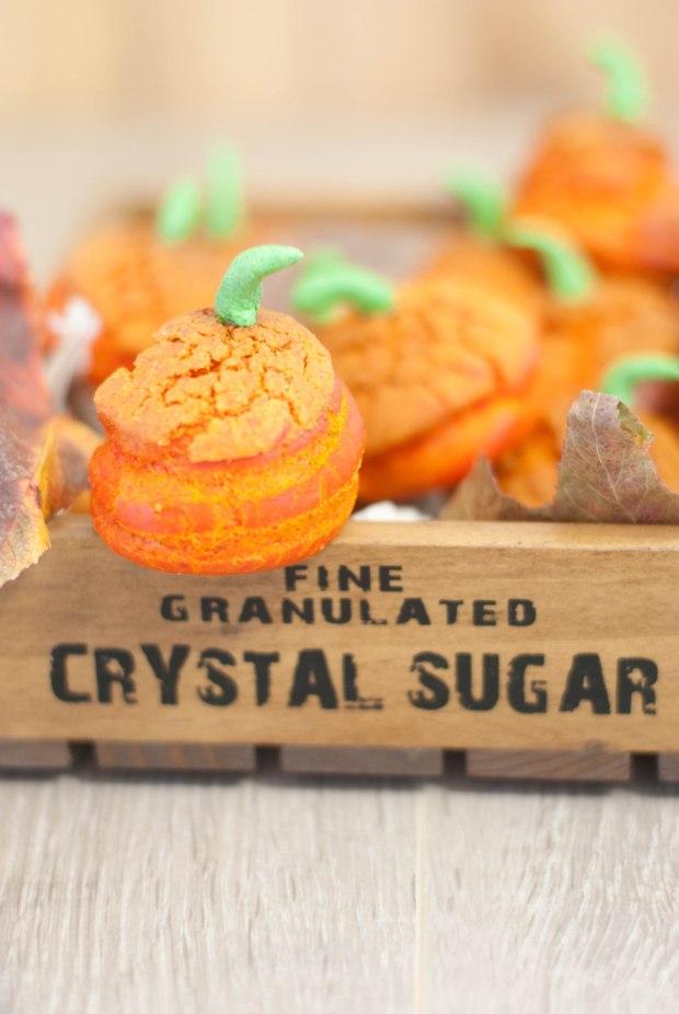 choux citrouilles - halloween pumpkin