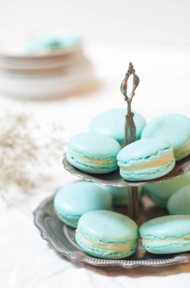 macarons chocolat blanc-6132