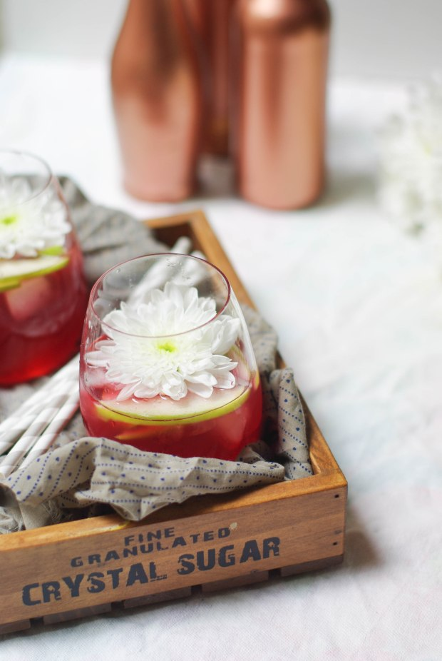cocktail cramberries pommes_-4