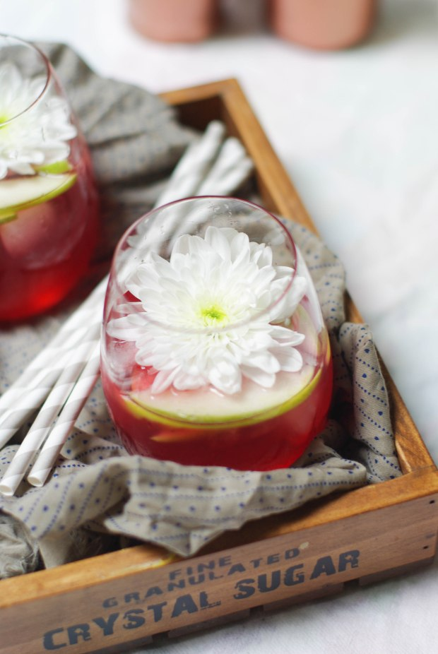 cocktail cramberries pommes_-5