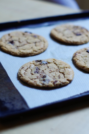 cookies choco-4